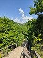 Bridge to Paiko Forest.jpg