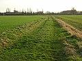 Bridleway across arable fields, South Moreton - geograph.org.uk - 674804.jpg