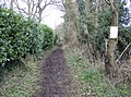 Bridleway at Cross Lanes - geograph.org.uk - 348528.jpg
