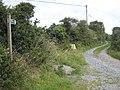 Bridleway leading to Higher Kerris - geograph.org.uk - 1417225.jpg