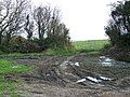 Bridleway near Batcombe - geograph.org.uk - 1576292.jpg