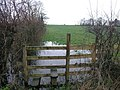 Bring Your Wellies - geograph.org.uk - 346656.jpg