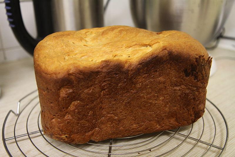 File brioche cuite dans une machine pain jpg wikimedia - Brioche machine a pain ...