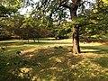 Bronx Zoo - NY - USA - panoramio (5).jpg