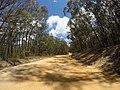 Brooman NSW 2538, Australia - panoramio (125).jpg