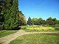 Bucuresti, Romania, Parcul Herastrau (Imagine din parc, 16); B-II-a-A-18802.JPG
