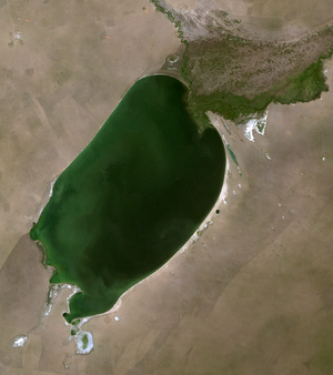 Buir Lake - Satellite image of Buir Lake
