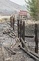 Burned fence Beaver Creek Fire.jpg