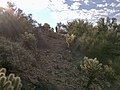 Butcher Jones Trail - Mt. Pinter Loop Trail, Saguaro Lake - panoramio (90).jpg