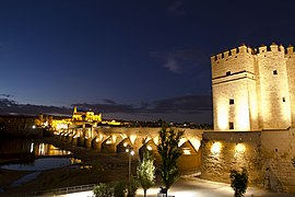 Córdoba at night.jpg