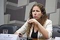 CAE - Comissão de Assuntos Econômicos (30636680372).jpg