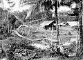 COLLECTIE TROPENMUSEUM Brug van rotan bij de koprafabriek op plantage Sawarna TMnr 10027499.jpg