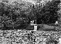 COLLECTIE TROPENMUSEUM Het Residentspark te Ambon Molukken. TMnr 60013226.jpg