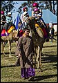 Caboolture Medieval Festival-36 (14673466012).jpg