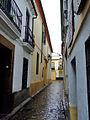 Calle Buen Pastor - Córdoba (España).jpg
