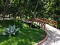 Caminho - panoramio (3).jpg