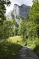 Canton de Schwytz - panoramio (88).jpg