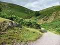Carding Mill Valley - geograph.org.uk - 1639304.jpg