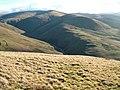 Carlin Gill from Blease Fell - geograph.org.uk - 309075.jpg