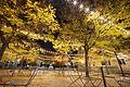 Carnegie Mellon University Legacy Plaza.jpg