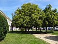 Casa de Oficios RI-51-0001062-00001,28534 P1070649.jpg