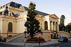 Casino Austria Hotline