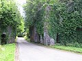 Castlecaldwell Forest, County Fermanagh - geograph.org.uk - 204190.jpg