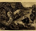 Catalogue des tableaux anciens et modernes, marbres composant la collection de feu M. Raymond Sabatier (1883) (14781655821).jpg