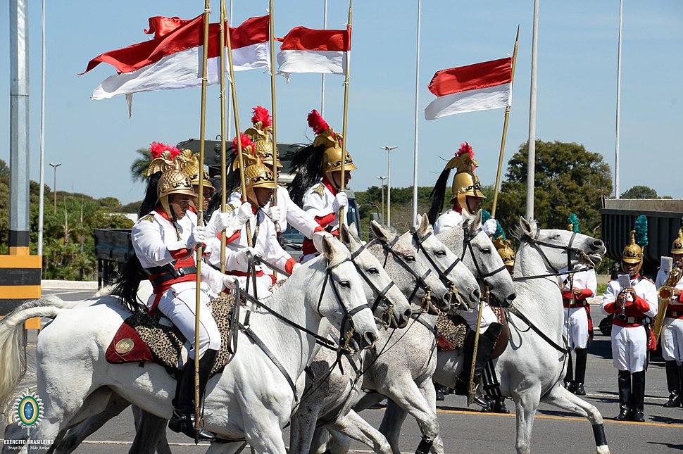 Cavalaria (28698695514)