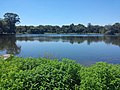 Cemetery Lake (Jo Pond), June 2016.jpg
