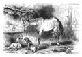 Cervantes - L'Ingénieux Hidalgo Don Quichotte de la Manche, traduction Viardot, 1836, tome 1, figure 072.png