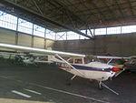 Cessna 172 SP-FLT.jpg