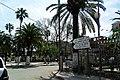 Chebli شبلي - panoramio (1).jpg
