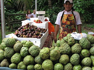 Neglected and underutilized crop - Cherimoya (Annona cherimola) on sale in Cali, Colombia. In left background: domestically produced mangosteen (Garcinia mangostana)