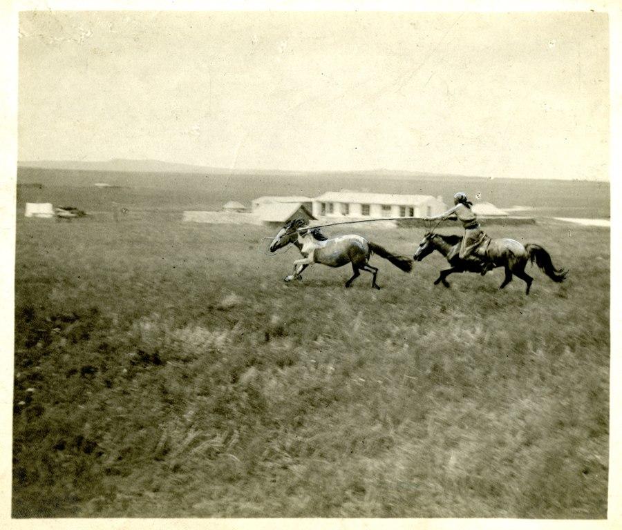 China, Miscellaneous Scenes- Mongol lassoing pony, Tabool, Mongolia (7454208824)