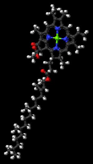 Chlorophyll a - Image: Chlorophyll a 3D balls