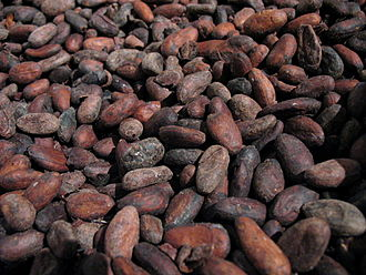 History of chocolate in Spain - Cacao beans, which the Spanish thought similar in appearance to almonds.