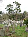 Churchyard, St Mary the Virgin, Bishopsteignton - geograph.org.uk - 120206.jpg