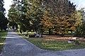 Cimetière des Rois, allée centrale, Genève.jpg
