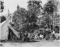 Civilian Conservation Corps in California, Camp Millwood, blacksmith shop - NARA - 197071.tif