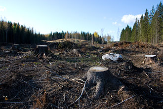 Clearcutting - Clearcutting in Southern Finland.