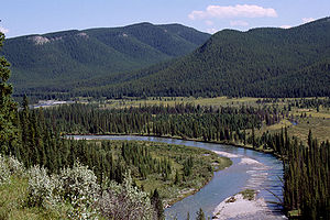 Clearwater River (Alberta) - The Clearwater River of southern Alberta, Canada