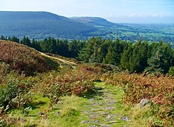 Cleveland Way at Live Moor.jpg
