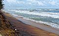 CoastalErosion-Wadduwa-June2013.JPG