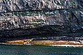 Coastline St John Newfoundland (41321604662).jpg