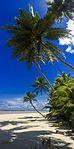 Cocos (Keeling) Islands 2017 (8).jpg