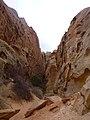 Cohab Canyon , DyeClan.com - panoramio (4).jpg