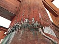 Coins on grand torii of Itsukushima Shrine.jpg
