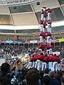 Concurs de Castells 2008 P1220436.JPG