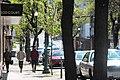 Congress Street in Downtown Troy.jpg